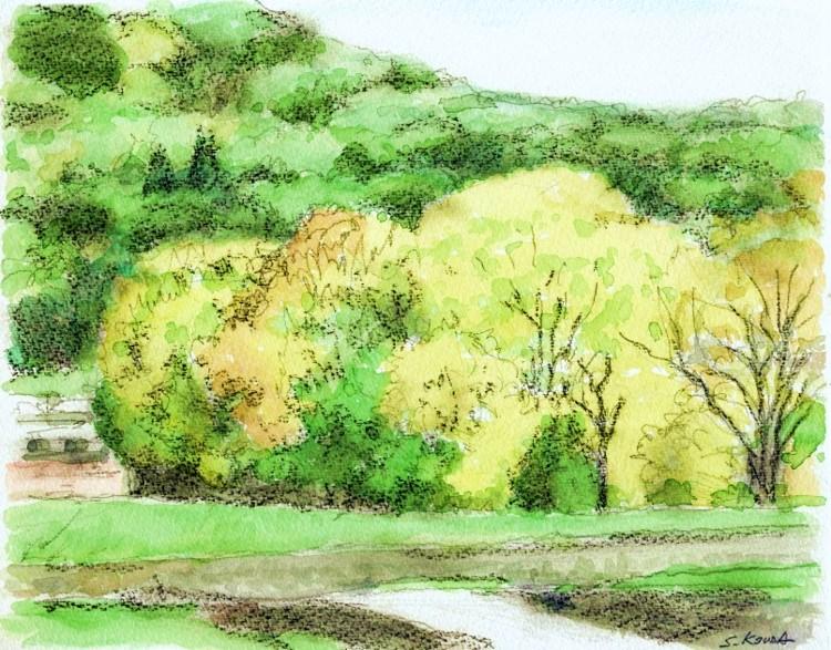 交野の風景1 (750x587)