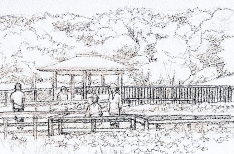 山田池の花菖蒲 デッサンSM (750x493)