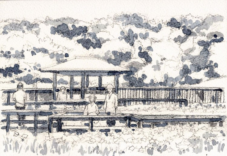 山田池の花菖蒲 グリザイユ (750x515)