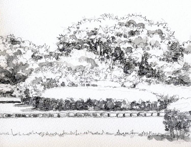 初夏の緑地公園 (750x580)