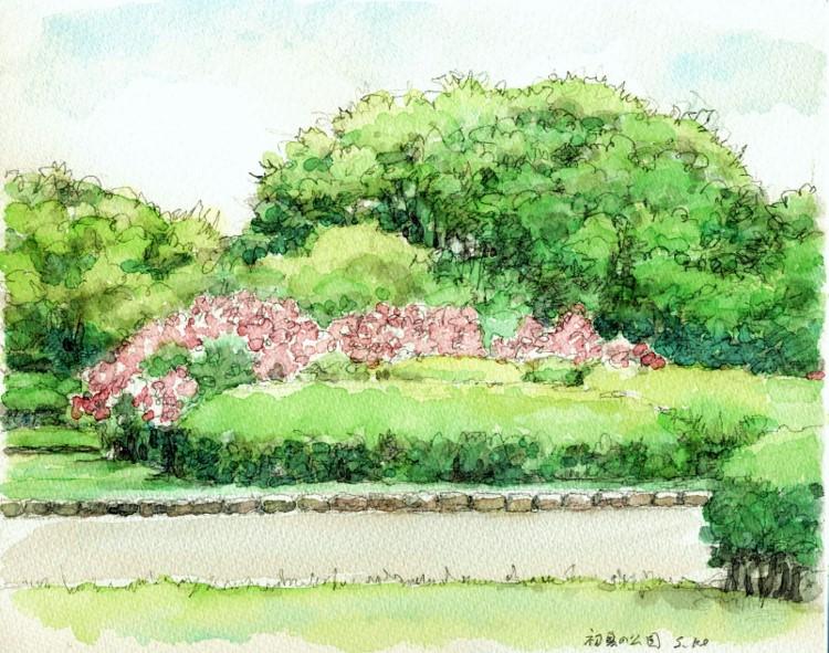 初夏の緑地公園 F3 (750x591)