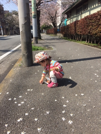 IMG_4328桜