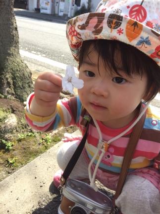 IMG_4322桜