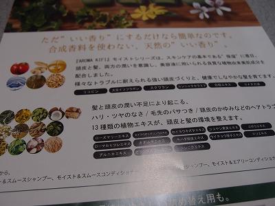 s-P3070401.jpg
