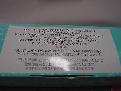 s-P3090453.jpg