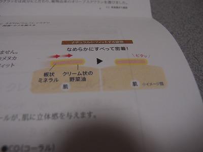 s-P5091095.jpg