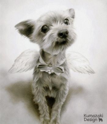 ペット肖像画 ペットの絵 ペット画 似顔絵 遺影 イラスト 犬 いぬ 小犬 子犬 モノクロ 白黒 色えんぴつ画 色鉛筆画