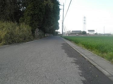 P4120029.jpg