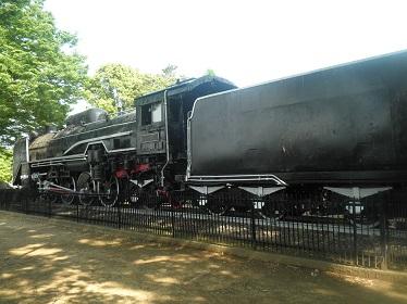 P5200176.jpg