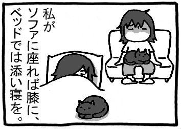 68a.jpg