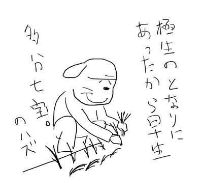 sitihounohazu.jpg