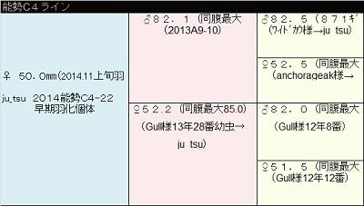 2014C4.jpg