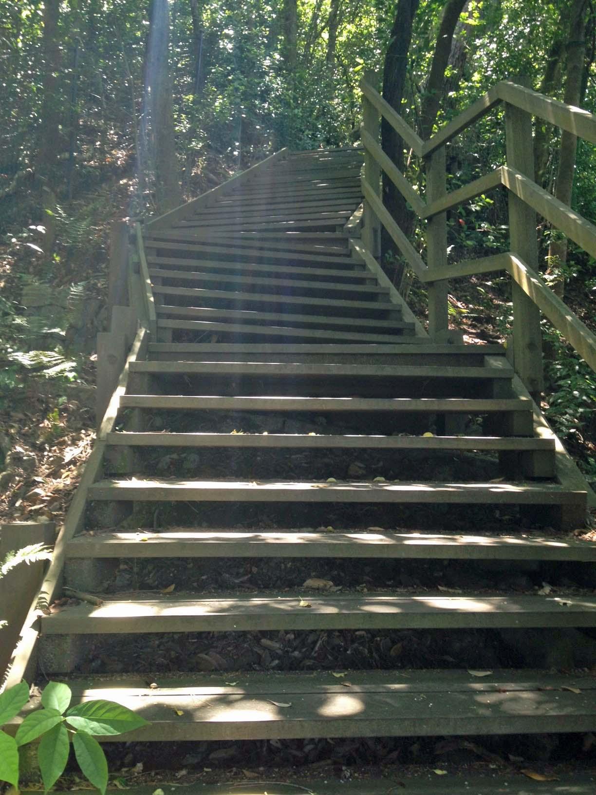 予想よりもきつい階段