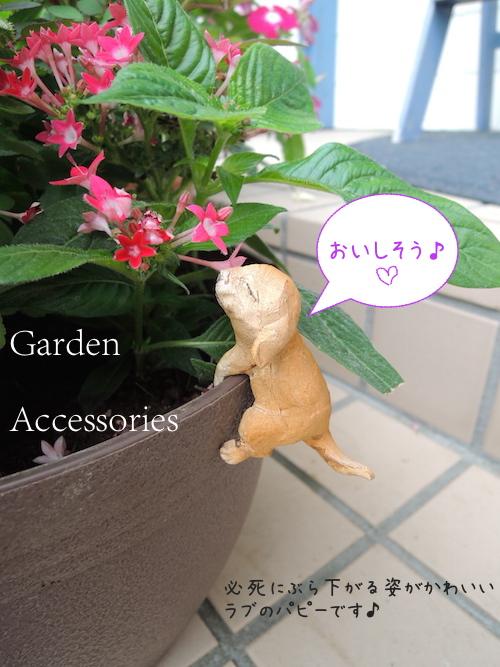 ガーデンアクセサリー/ぶら下がりラブパピー4