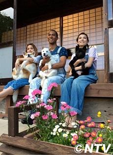 日本犬の里