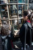 ふくろう便 (Owl Post) の前の見習い魔女たち