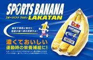 ラカタンバナナ