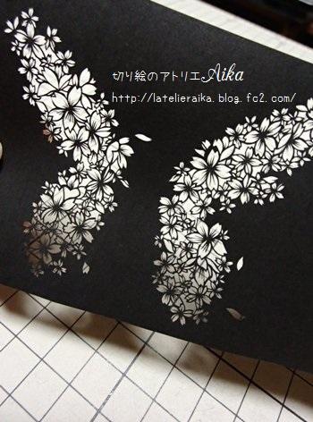 桜蝶20150208