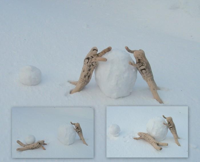 雪との格闘の日々・・・