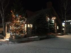 クリスマスツリー夜3