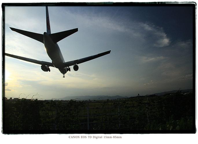 1208itamiairport1.jpg