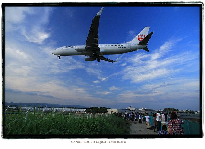 伊丹空港千里川土手1208itamiairport3.jpg