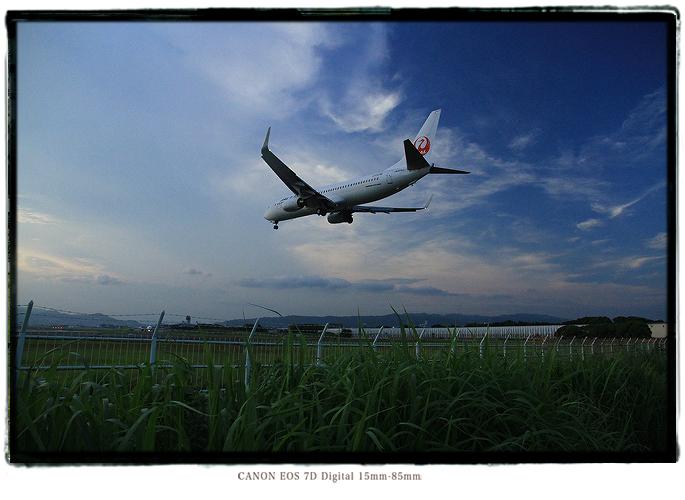 伊丹空港千里川土手1208itamiairport4.jpg
