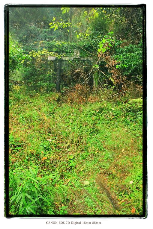 大仁金山山神社の廃鳥居1412oohito11.jpg