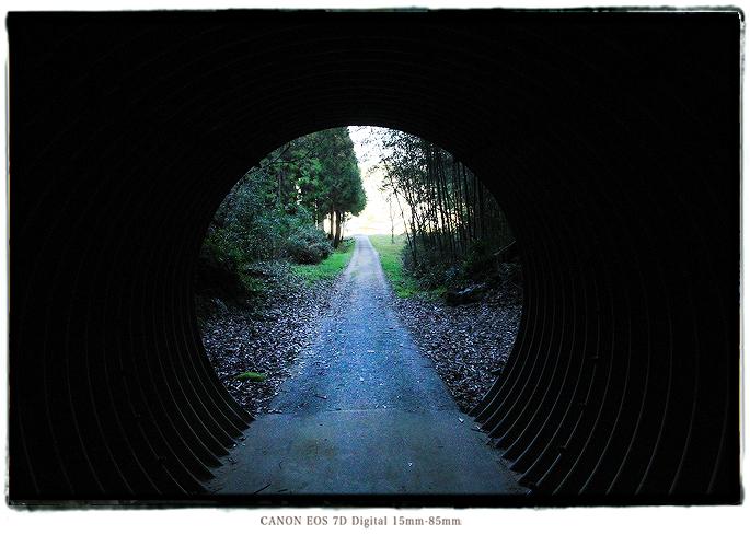素掘りのトンネル岩谷隧道1501harumatome12.jpg