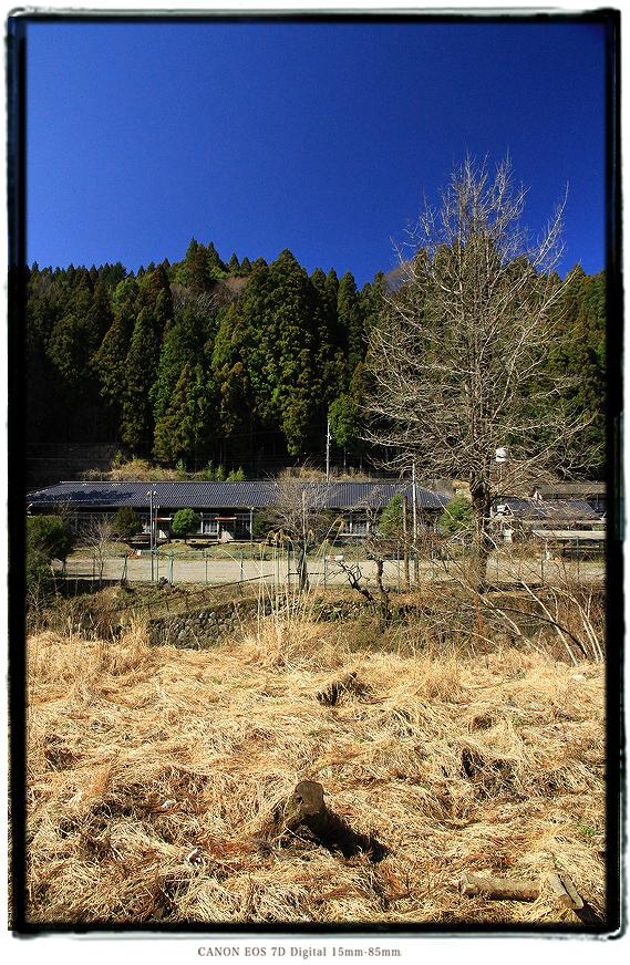 設楽ダムに沈む旧八橋小学校跡1503shitaradam02.jpg