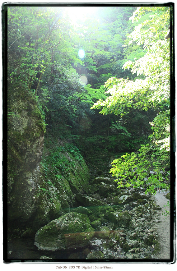 京都府福知山市天岩戸神社1505gw0424.jpg
