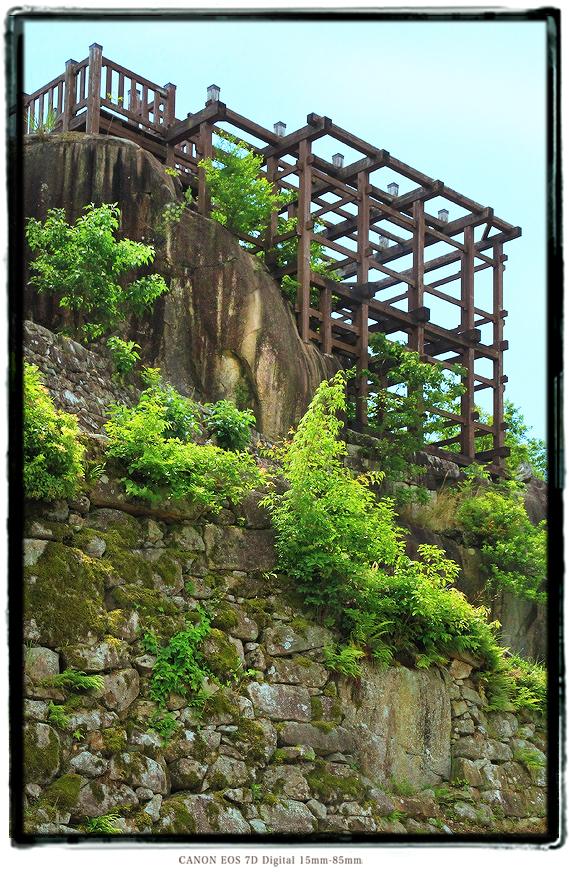 苗木城1505naegicastle10.jpg