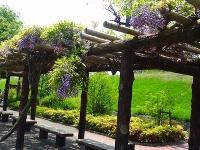 清須古城跡公園