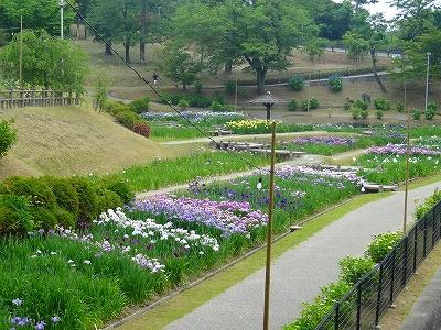 岡崎東公園1