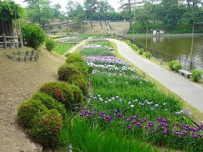 岡崎東公園6
