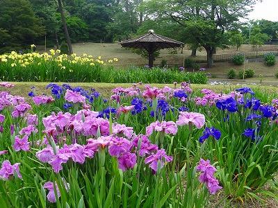 岡崎東公園3