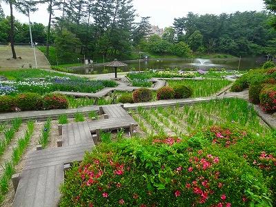 岡崎東公園5