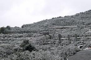 アナ雪10