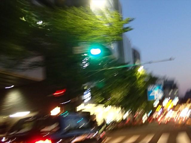 P4270043_R.jpg