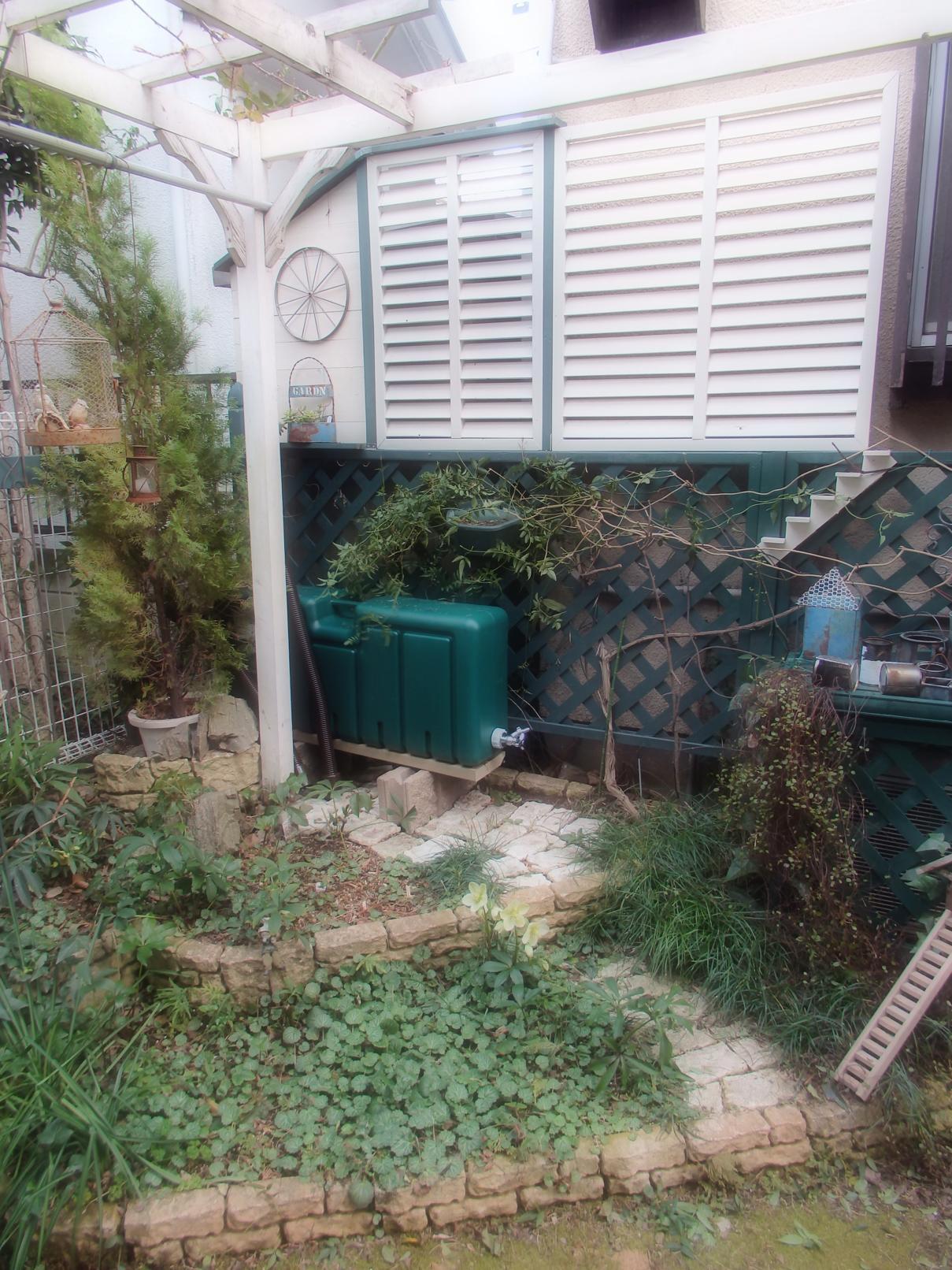 雨水タンク設置場所