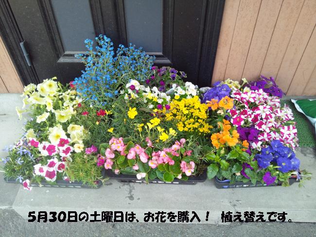 004-1579-98754.jpg