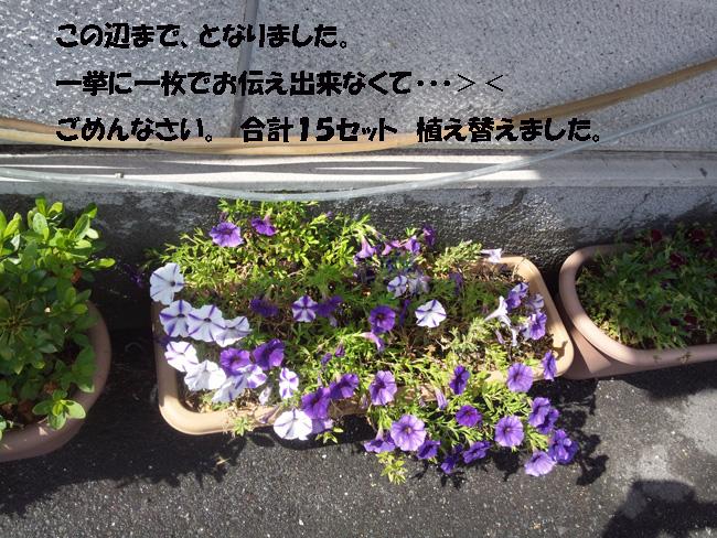 006-15789-876532.jpg
