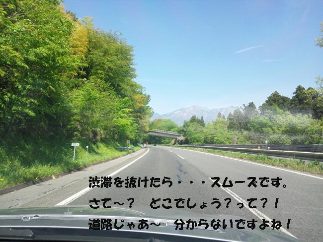 006-345678.jpg