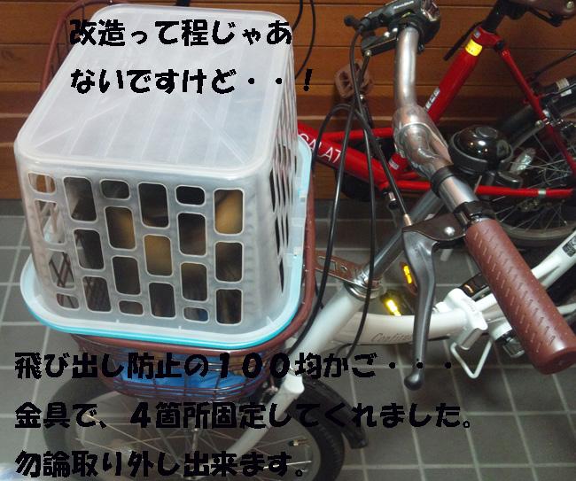009-13467-876542-987.jpg