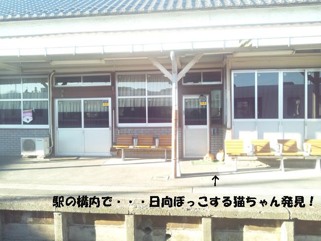 015-10000-1.jpg