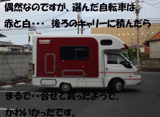 015-14678-987653.jpg