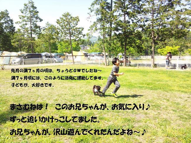 015-4689-98764-2015-05-06.jpg
