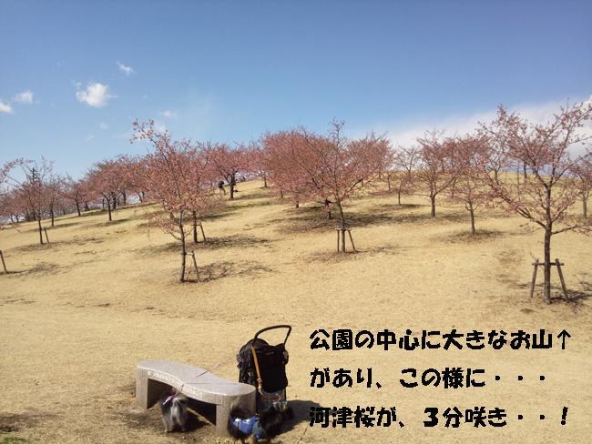 024-1010-3456789.jpg