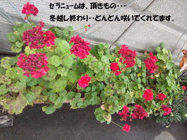 026-135789-098764.jpg