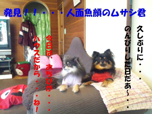 150107_091533-1.jpg
